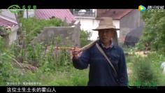 看安徽:霍山石斛的传承与发展