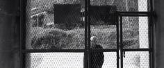 中国金寨红色微电影《背影》